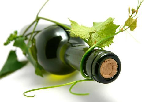 Ökologische Weine und vegane Weine – worin unterscheiden sie sich?